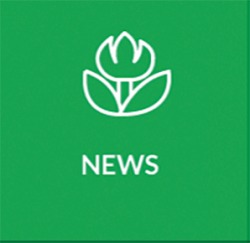 icona news app
